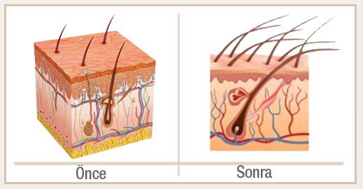 Dermo Mineral Sakal Serumu Kullananlar